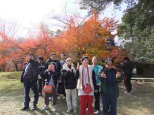 秋)紅葉狩り
